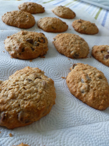 Yummy oatmeal cookies, fresh from the oven1