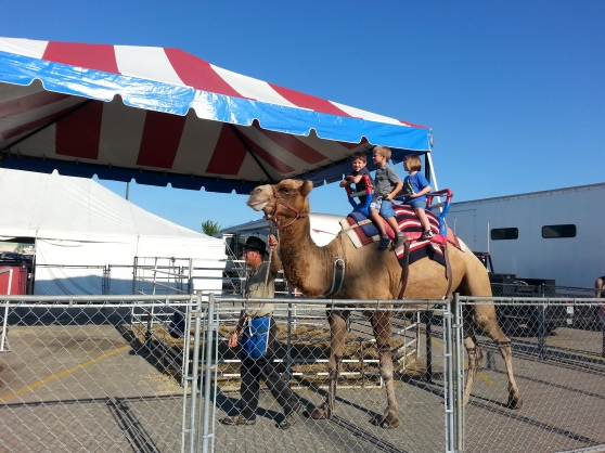 This camel showed up outside our mall over the weekend. Camel rides $5. Photos $10. Memories priceless. (But no, I don't know these kids!)