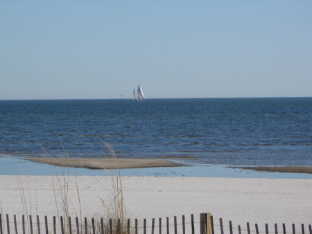 Sailboat on the Gulf