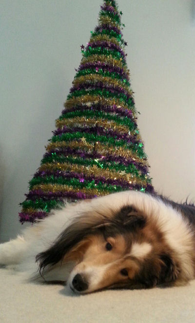 Okay, so how much longer do I have to wait until Mardi Gras?? (It's today, everybody -- let the good times roll!)