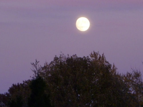 full_moon_2014