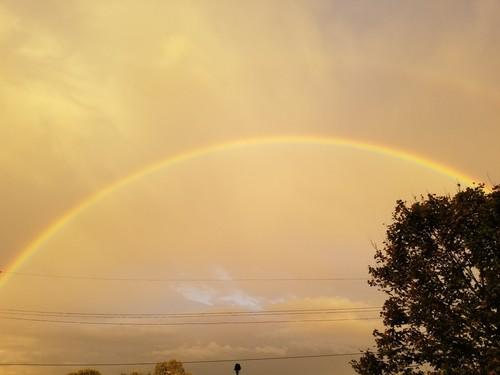 rainbow4